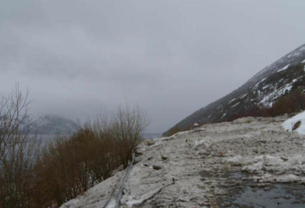 SPERRER VEIEN: Et 200 meter bredt snøras har feid over Riksvei 17 i Rana. Rednignsmannskaper søker nå i skredet og i vannkanten, det er foreløpig uvisst om noen er tatt av raset. Foto: Nils Forsbakk