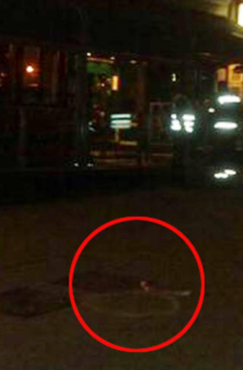 HYLSER: Etter skytingen fant politiet flere hylser på bakken i Oslos hovedgate. Mobilfoto: Eiliv Frich Flydal