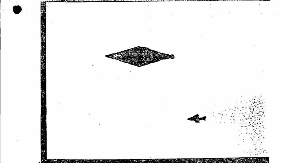 UFO: Denne skissen av et diamantformet objekt har lenge vært en av Storbritannias største UFO-gåter. Nå er dokumentene bak etterforskningen frigitt. Uten at gåten er blitt løst.