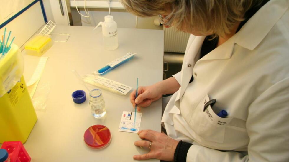 LETER: Jakten etter smittekilden til E. coliutbruddet pågår for fullt. På dette bildet tester Gro Johannessen ved seksjon for matbakteriologi og GMO bakterienes overflateegenskaper. Foto: HANNE MARI JORDMYR/VETERINÆRINSTITUTTET