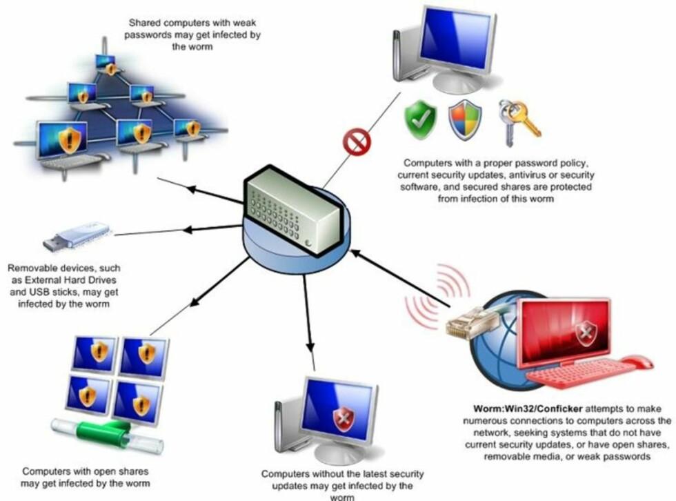 SLIK VIRKER ORMEN: Denne illustrasjonen fra Microsoft viser hvordan Conficker-ormen virker. Illustrasjon: MICROSOFT