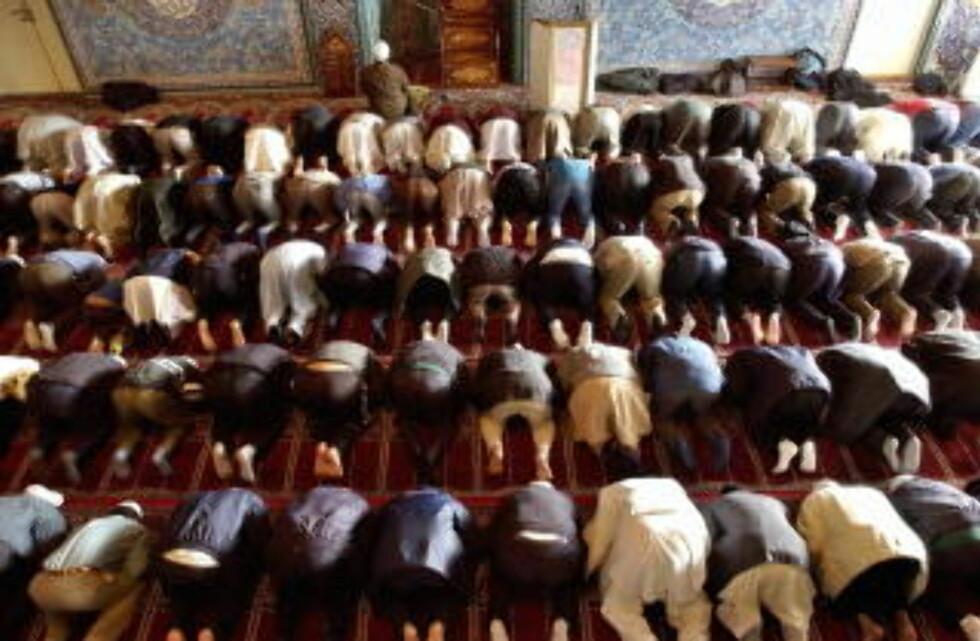 ISLAMSK BAKGRUNN: Hvis innslaget av mennesker i Norge med islamsk bakgrunn blir stort nok vil vi få et kraftig tilbakeslag for kjønnslikestillingen i Norge. Her fra fredagsbønnen i moskeen i Åkebergveien i Oslo. Foto: Arash A. Nejad / SCANPIX