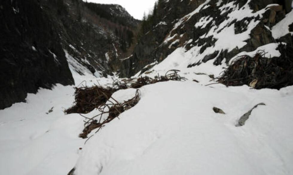 GAMLE SYNDER UNDER SNØEN: Søppelet dekker bredden av juvet og strekker seg 100 - 200 meter innover. Foto: Øistein Norum Monsen.