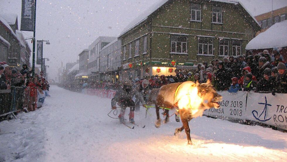 REINKAPPLØP: NM i reinkappløp er etter Lonely Planets mening nummer en på lista over «Best Christmas Crackers». Foto: Midnight Sun Marathon, Tromsø.