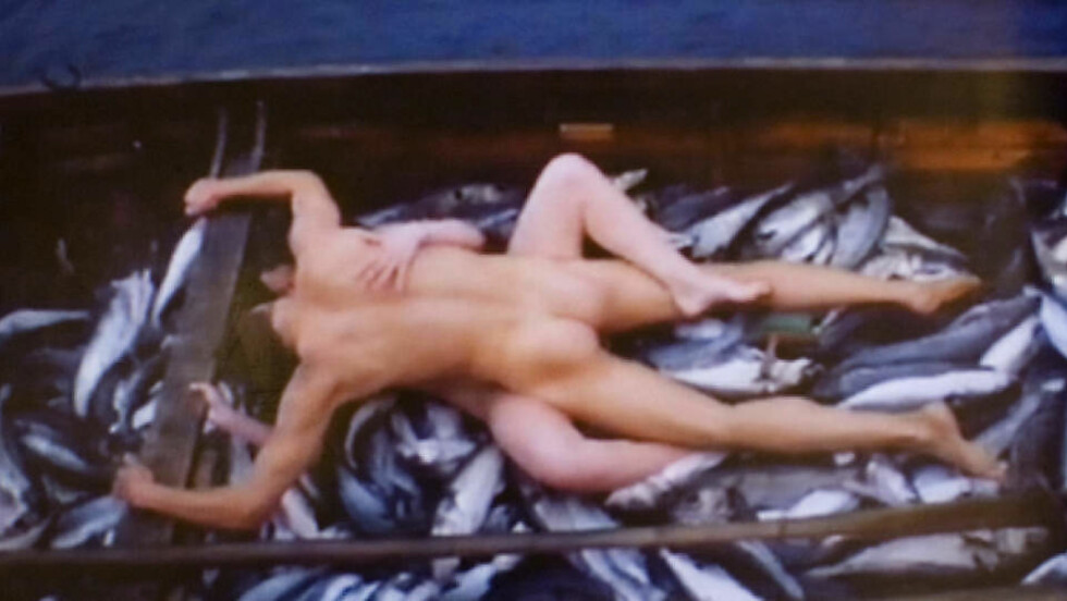 <strong>DETTE ER LOV:</strong> Dette bildet hadde NRK rett til å vise, slo retten fast. Men ikke de etterfølgende bildene av en frontalt naken Gørild Mauseth, alene i båten.