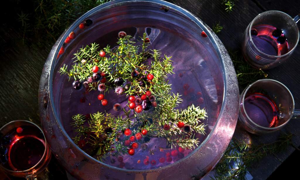 SMAK AV VINTER: Ta skogen til kjøkkenet, og trekk en varmende vinterdrikk på einer og tyttebær - sunn er den også.