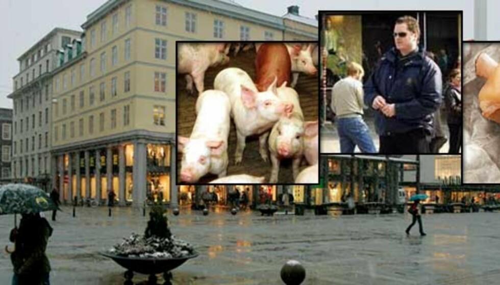 Syltelabber og grisehyl skal stoppe fredagsbønnen