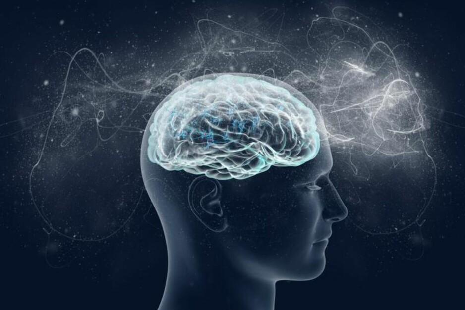 INTELLIGENT MENNESKE: Vi tar intelligens for gitt og tenker ikke over hvor mye som foregår i hjernen. Derfor er det vanskelig å rekonstruere det, ifølge forskere. Foto: VITSTUDIO / SHUTTERSTOCK / NTB SCANPIX