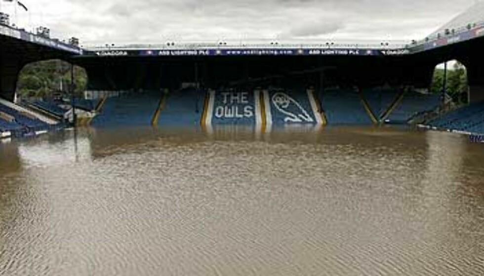 Vannpolo neste, Sheffield Wednesday?