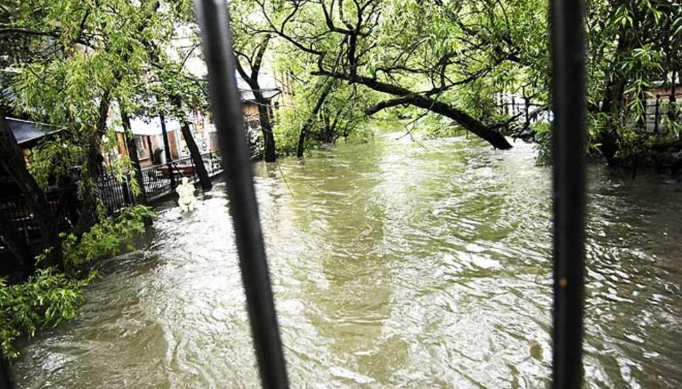 VANN, VANN, VANN: Det kraftige regnfyllet gjorde at Akerselva gikk over sine bredder. FOTO: Thomas Rasmus Skaug/Dagbladet