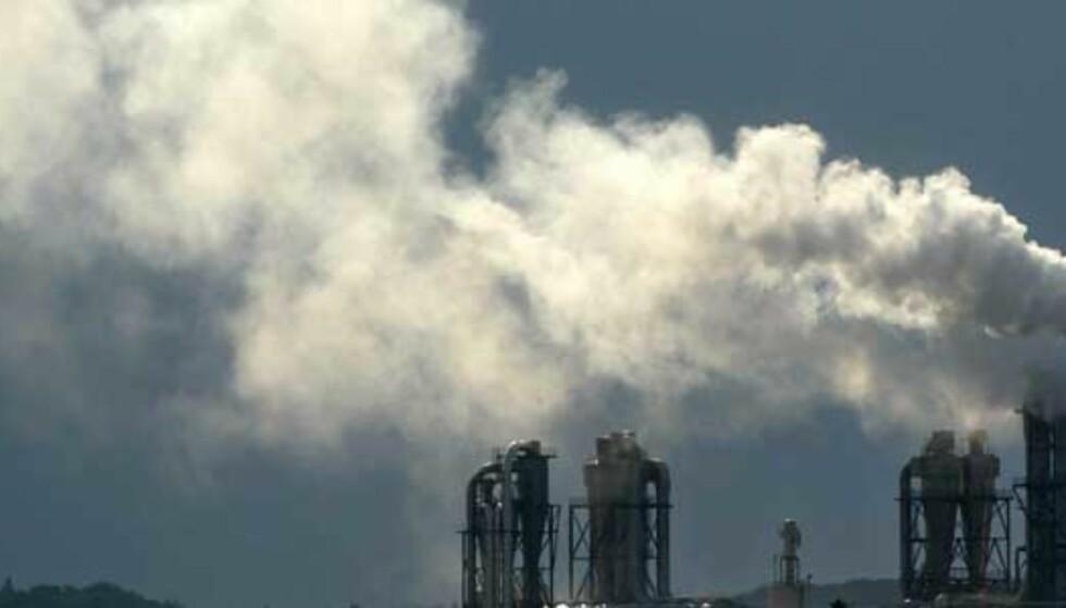 - Kaster bort penger på CO2-reduksjon