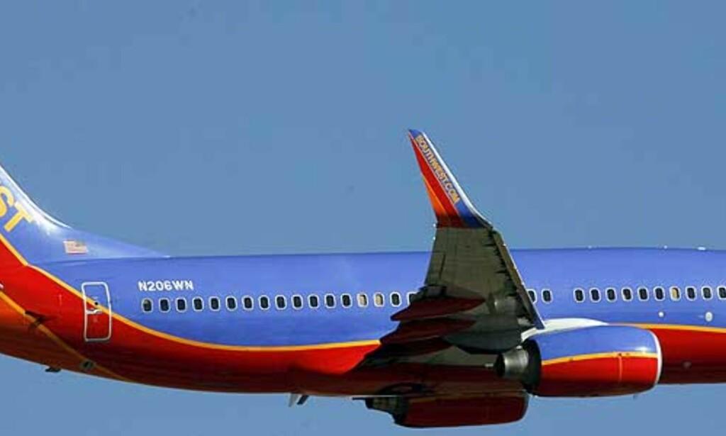 image: 16-åring ville kapre fly i USA