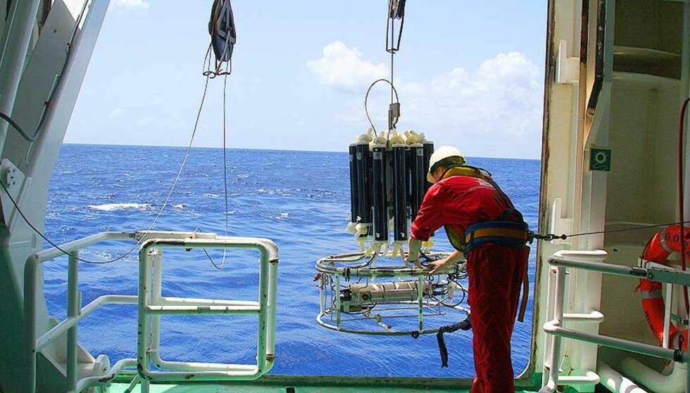 OPP FRA DYPET: Forskerne henter sedimentkjerner fra havbunnen i tropene. Foto: JILL JOHANNESSEN