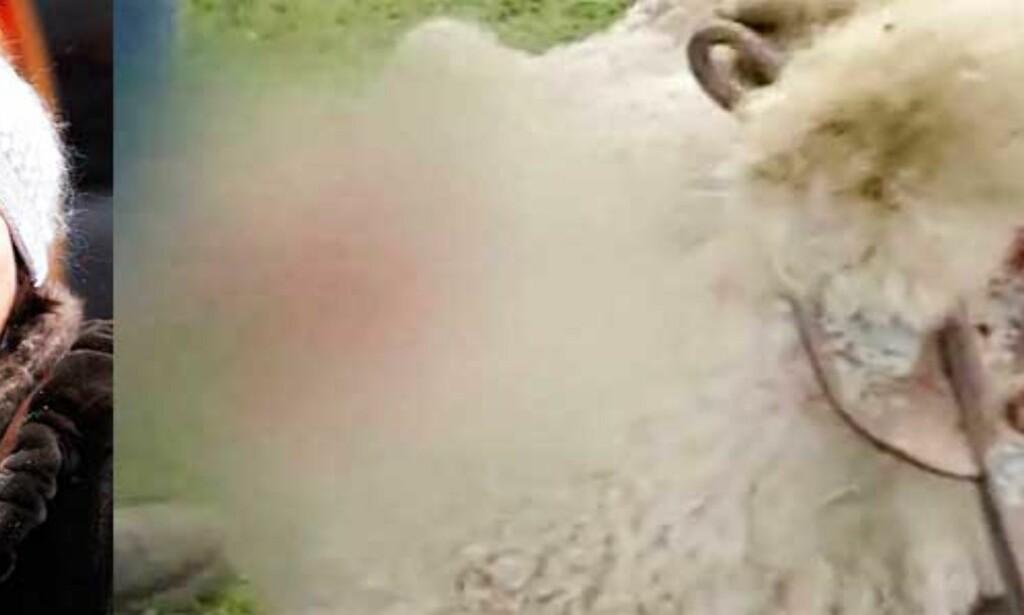 image: Prinsesse Mary reklamerer for skrekkulla