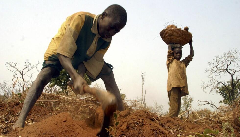 RYDDER LAND: En bonde i Vest-Afrika jobber med en en liten jordflekk han har fått utdelt av myndighetene. Småbøndene i mange afrikanske land står foran store utfordringer. Foto: George Osodi / AP / NTB Scanpix