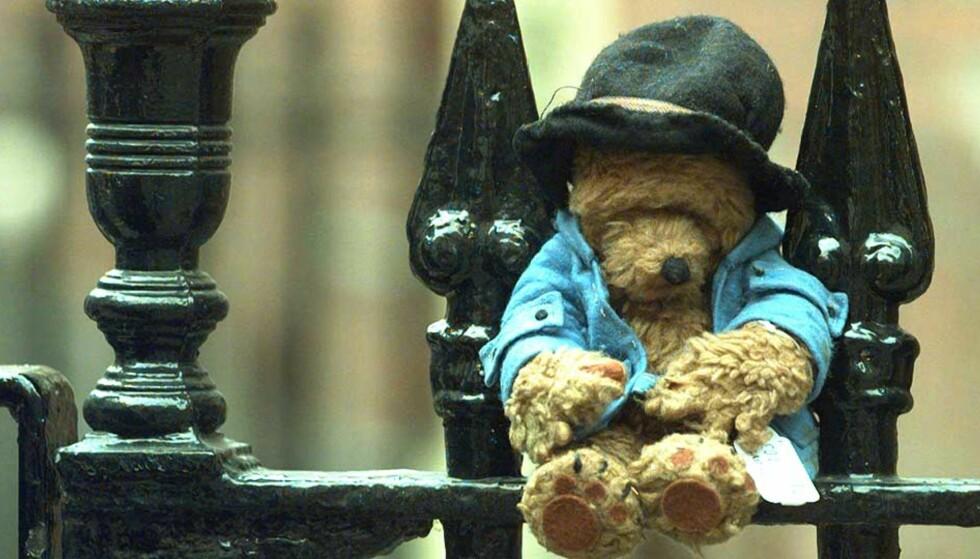 OVERSATT TIL 40 SPRÅK: Dette er den originale bjørnen som inspirerte forfatteren Michael Bond til å skrive om Paddington. Foto: AP/SCANPIX