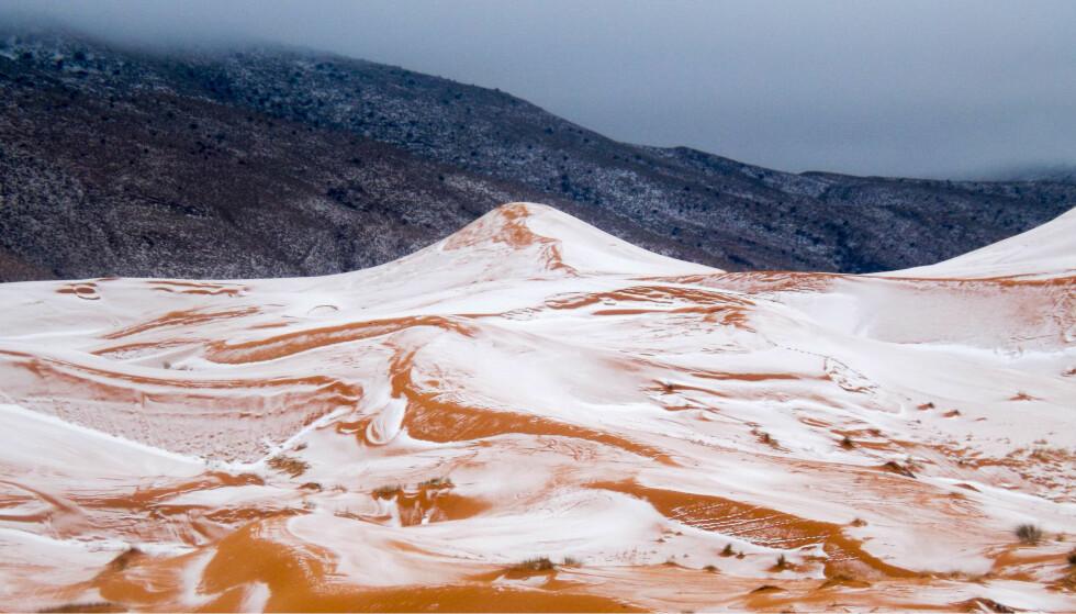 SNØ: Snø er noe man sjeldent ser i verdens største varmeste ørken. Foto: Photography / rex / shutterstock / NTB Scanpix