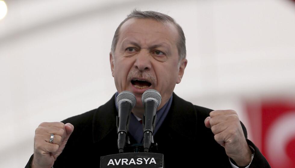 KONFLIKT: Tyrkias president Erdogan har gått hardt ut mot Nederland etter at to tyrkiske ministre ble nektet innreise til landet forrige uke. Han får støtte fra kjøttprodusenter i Tyrkia, som nå har valgt å sende 40 kyr tilbake til Nederland for å vise sin protest mot landet. Foto: NTB scanpix