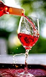 VEGANVIN: på verdens første vegancruise er også vinen vegansk. så langt går ikke Hurtigruten - ennå. Foto: NTB SCANPIX