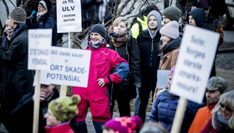 ENSOM ULV: Truls Gulowsen fra Greenpeace var i klart mindretall blant ulvemotstanderne som demonstrerte foran Stortinget onsdag. Foto: Bjørn Langsem / Dagbladet