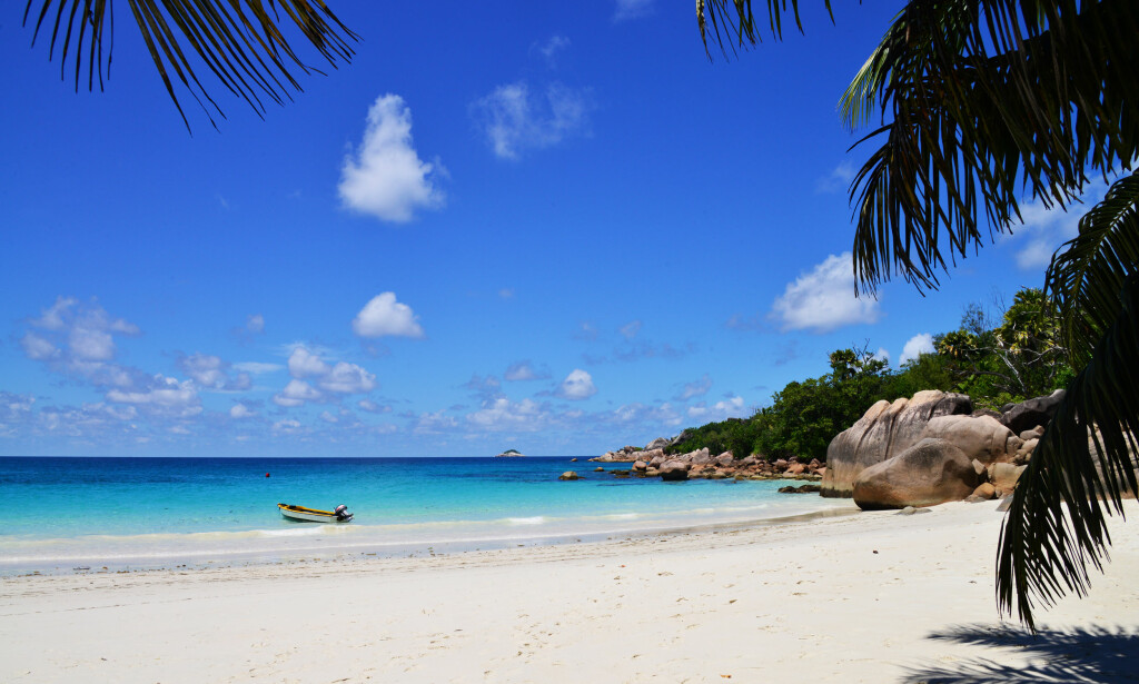 VERDENS VAKRESTE: Den prisbelønte stranda Anse Lazio regnes som en av Seychellenes aller vakreste, med silkemyk sand, duvende palmetrær og de klassiske granittsteinene. Foto: Torild Moland / Magasinet Reiselyst