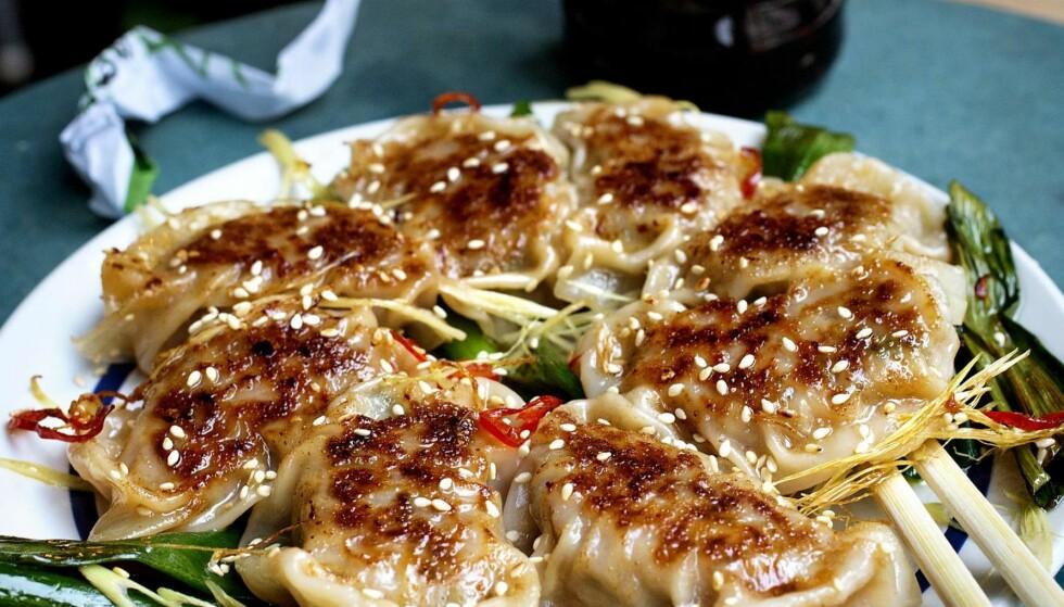 KUL KLASSIKER: Supergode og saftige stekte gyoza dumplings er en klassiker på gatematrestauranten Hitchhiker i Oslo. Kjøkkensjef Jan Robin Ektvedt viser deg hvordan du kan lage dem selv. Foto: Mette Møller