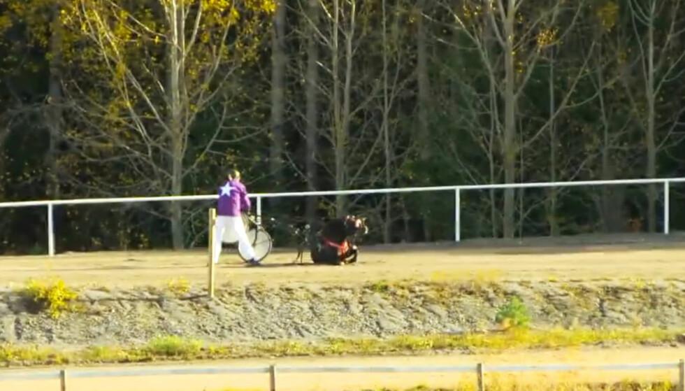 <strong>MØTER KRITIKK:</strong> TV4 møter sterke reaksjoner etter det dramatiske klippet av hesten Zorro som mister balansen. FOTO:TV4