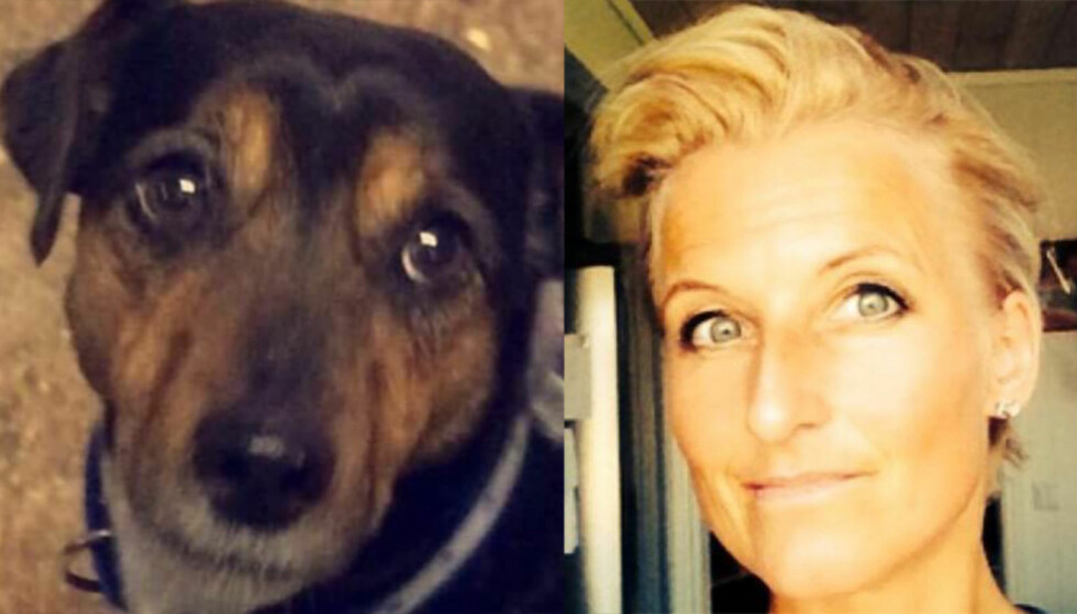 DREPT: Ludvig (8) var ifølge matmor Mari en stor terrier, på 8-10 kilo. Hun er forferdet etter at en hunden ble drept av minst tre ulver. Foto: Privat