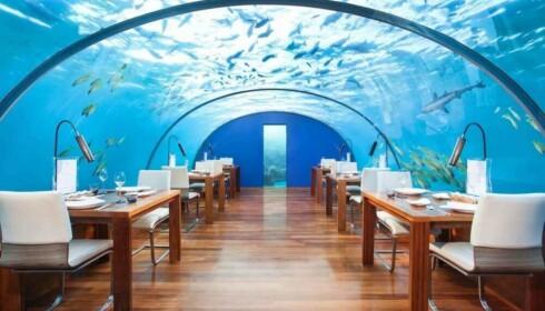 UNDER VANN: Å spise her på restaurant Ithaa på Maldivene har vært manges drøm. Nå er en liknende opplevelse på Sørlandet like om hjørnet. Foto: NTB SCANPIX