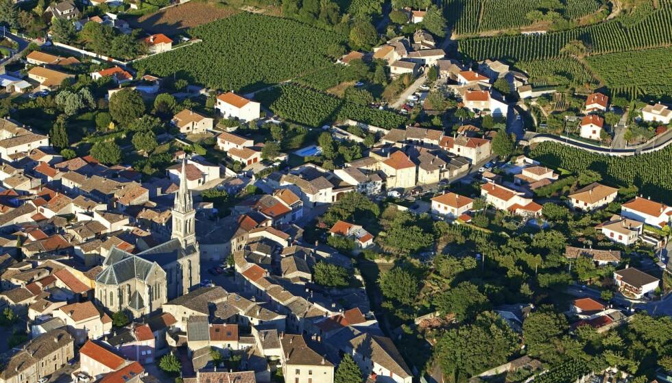 LANDSBYEN: Mens det i nabokommunene er lov å blande inn litt grønne druer er det hundre prosent syrah som gjelder i Cornas. Foto: Camille Moirenc / hemis.fr / NTB Scanpix