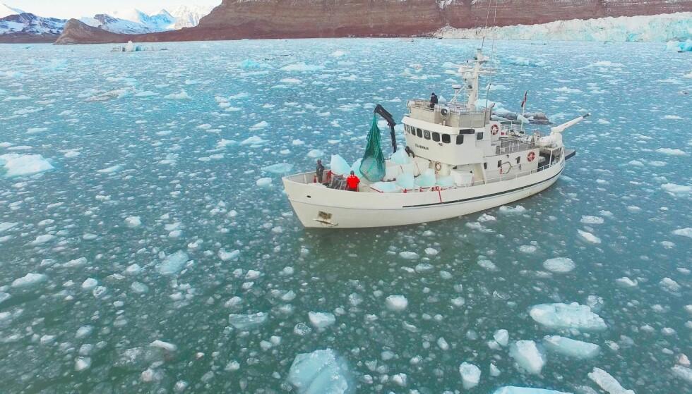 PÅ TOKT: Det eksklusive flaskevannet er tappet fra små isfjell utenfor Svalbard. Foto: Jamal Qureshi