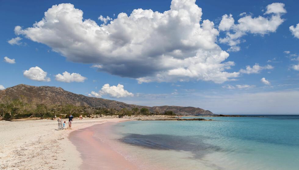 SILKEMYK OG VAKKER: Elafonisi-stranda helt sør på Kreta er noe for seg selv, og er flere ganger kåret til øyas aller fineste. Det er til å forstå. Foto: NTB Scanpix