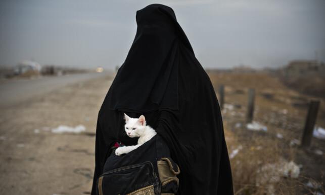 Lulu: En kvinne og hennes katt Lulu (arabisk for perle) venter på transport til en flyktningeleir I Shaqouli i Nord-Irak, for å komme seg bort fra kampene mellom IS og irakiske styrker i Mosul. Foto: Odd Reidar Andersen, AFP.
