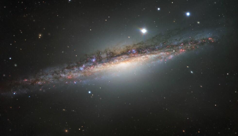 NABOKRANGEL: Dette bildet av galaksen NGC 1055 ble offentliggjort av European Southern Observatory (ESO) 1. mars i år. En del rare vridninger i galaksestrukturen tyder, ifølge astronomene, på sammenstøt med en annen, større nabogalakse. Foto: AFP PHOTO /ESO
