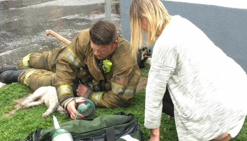 MASKE: Andrew Klein holdt på i over 20 minutter før hunden igjen pustet. Foto: Santa Monica Fire Department