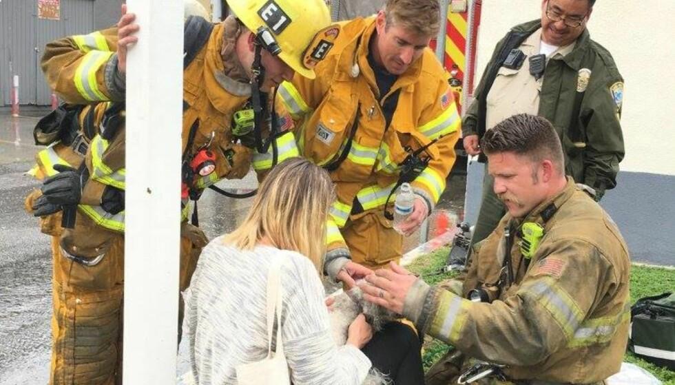 GJENFORENT: Her blir Nalu gjenforent med eieren etter å ha blitt reddet. Foto: Santa Monica Fire Department
