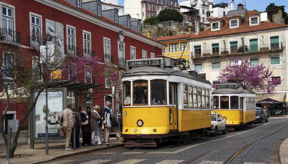 <strong>PITTORESK:</strong> Lisboa er kjent for sine trikker, men har også mat og kultur i verdensklasse å tilby. Foto: Runar Larsen / Magasinet Reiselyst