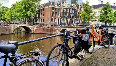 <strong>AVSLAPPET:</strong> Det nærmer seg tid for tulipan-blomstrin i Amsterdam, som ellers byr på både topp shopping og avslappet stemning. Foto: Shutterstock / NTB Scanpix
