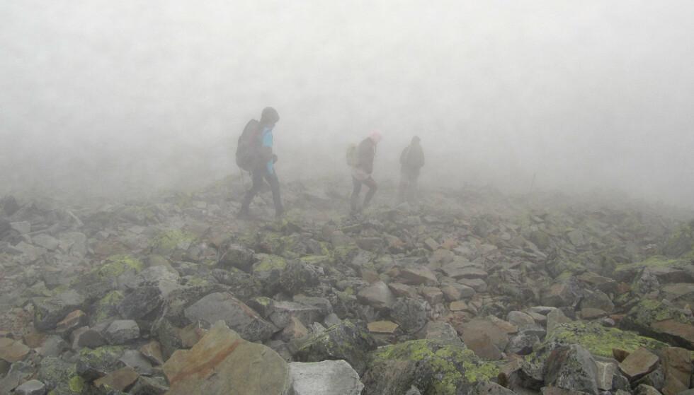 DÅRLIG DEKNING: Flere steder i fjellheimen kan det være utfordrende med DAB- og mobildekning. Foto: Berit Keilen  / NTB SCANPIX