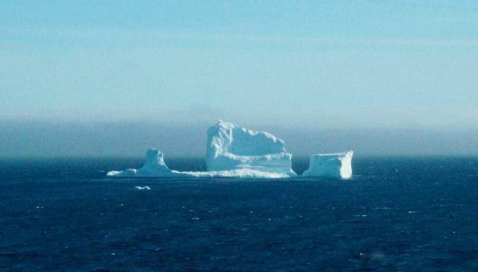 STORT: Ordføreren i Ferryland tror isfjellet som nå ligger rett utenfor byen er det største han har sett. Foto: REUTERS / Jody Martin / NTB Scanpix