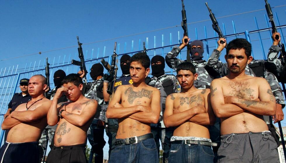 MS-13: På 80-tallet var Mellom-Amerika preget av høyt konfliktnivå. Spesielt i El Salvador der det var borgerkrig. Titusener av salvadoranere flyktet nordover til USA, hvor gjengen MS-13 ble dannet for å beskytte folk fra hjemlandet. Foto: Roberto Carlos / Reuters / NTB
