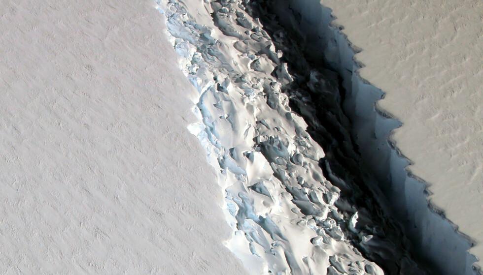 GIGANTISK: NASAs IceBridge-program målte i desember i fjor denne sprekken i isbremmen Larsen C til å være omtrent 11 mil lang, 90 meter bred og 500 meter dyp. Foto: Maria-Jose Vinas / NASA