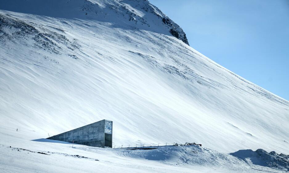 Hvelvet: Frøbanken på Svalbard. Også kalt dommedagshvelvet. Longyearbyen. Foto: Øistein Norum Monsen