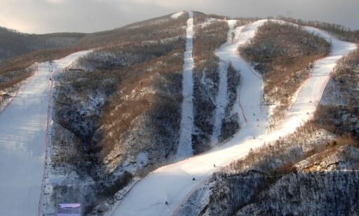 TOPP PROFIL: De 10 bakkene i nordkoreanske Masik er rent sportslig gode nok for internasjonale renn. FOTO: AFP
