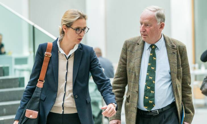 Frauke Petry bekræfter farvel til AfD efter kanonvalg