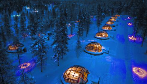 GLASS-IGLOER: Dette nord-finske hotellet har spesialisert seg på Nordlys-turister og har bygget en rekke luskuriøse glass-iglooer - noen av dem med egen privat sauna - hvor du kan ligge i senga og betrakte fargespillet på himmelen. Foto: Kakslauttanen Arctic Resort