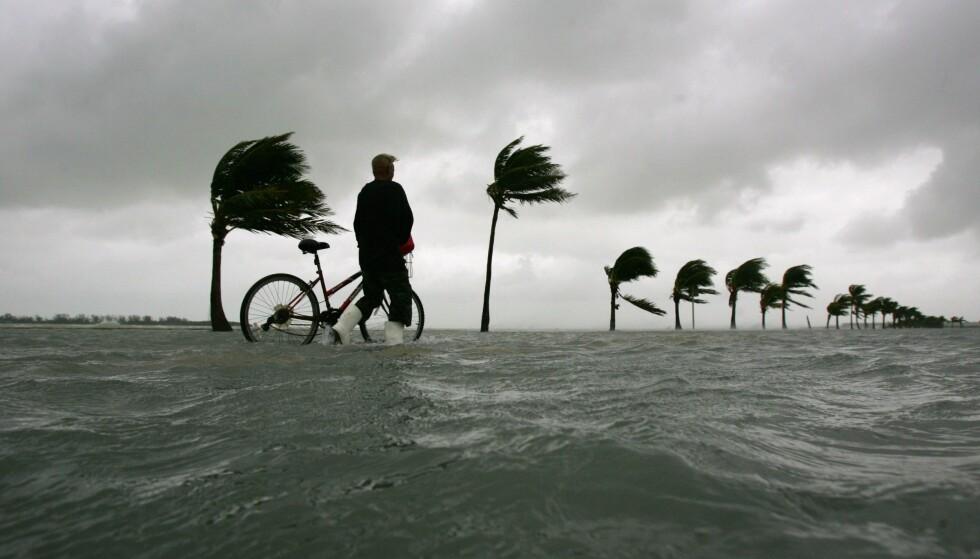 LIGGER TYNT AN: Den amerikanske delstaten Florida er blant områdene som er svært utsatt for stigende vannstand. Her et bilde tatt under en oversvømmelse i Key West da orkanen Wilma rammet i 2005. Foto: REUTERS/Carlos Barria /NTB Scanpix