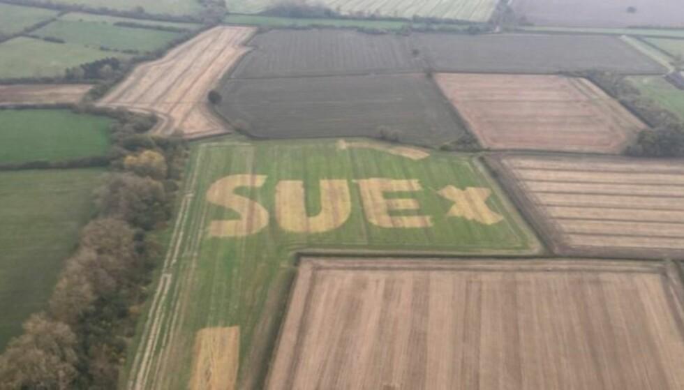 #WhoIsSue: Det var mange som lurte på hvem Sue var, etter at det britiske politiets flyvetjenste (NPAS) delte dette bildet på Twitter. Foto: NPAS