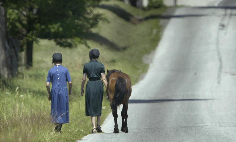 MUTASJON: En genmutasjon funnet hos en Amish-gruppering i Indiana kan hjelpe forskere med å bremse aldersrelaterte sykdommer. Foto: AP Photo / Amy Sancetta / NTB scanpix