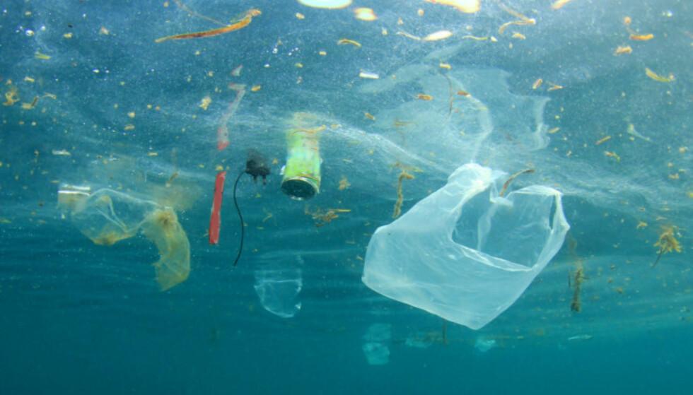 FORURENSNING: Plast som brytes langsomt ned til mindre partikler, som kalles mikroplast. Denne prosessen kan ta flere hundre år, og miljøvernere frykter effekten dette kan ha på næringskjeden. Illustrasjonsfoto: Rich Carey / Shutterstock / NTB scanpix
